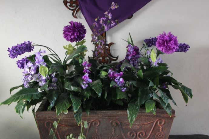 Lenten flowers