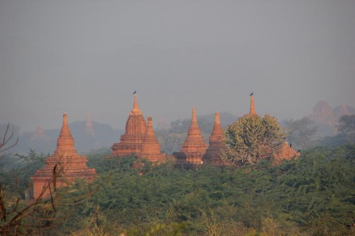 morning Bagan